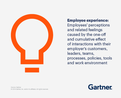 Employee experience: Employees' perceptions and related feelings caused by the one-off and cumulative effect of interactions with their employer's customers, leaders, teams, processes, policies, tools and work environment