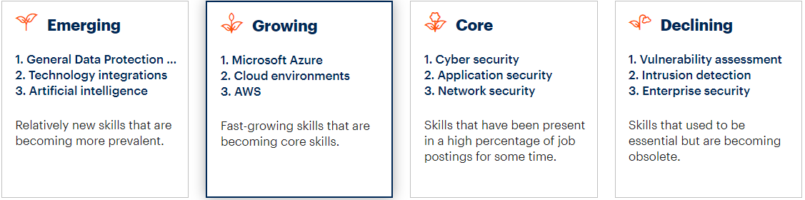 Skills lifecycle for cybersecurity roles in the U.S.