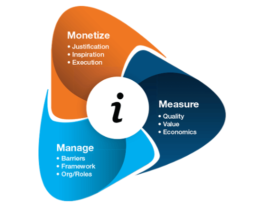 Monetize: justification, inspiration, execution. Measure: quality, value, economics. Manage: barriers, framework, org/roles.
